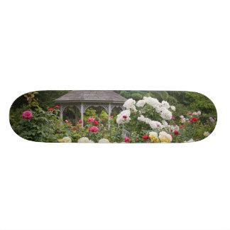 Roses in bloom and Gazebo Rose Garden at the Skateboard Decks