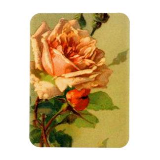 Roses in Bloom flexible magnet