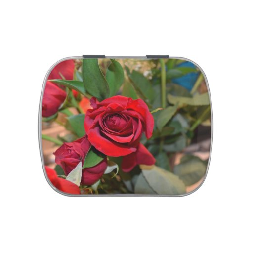 roses in bouquet jelly belly candy tins