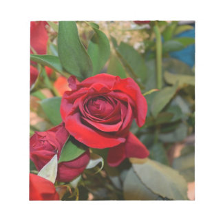 roses in bouquet notepad