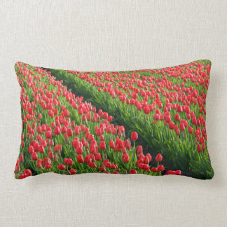 Roses in Farmland Pillows