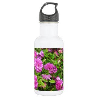 Roses in Olympia Farmer's Market Garden Stainless Steel Water Bottle