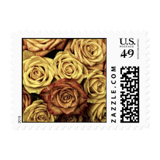 Roses in Sepia Tone Postage