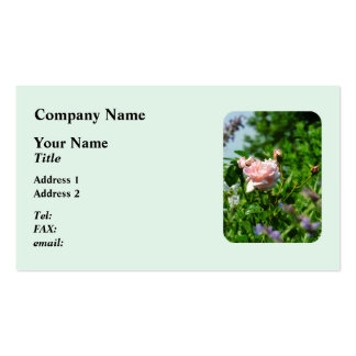 Roses in the Garden Double-Sided Standard Business Cards (Pack Of 100)