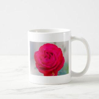roses in the garden coffee mug
