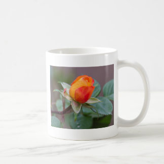 roses in the garden coffee mug