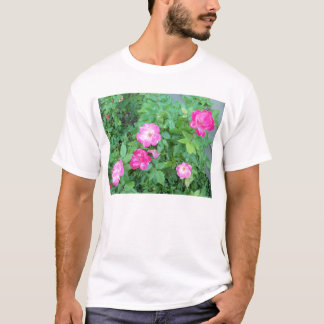 Roses in the Sassy Garden T-Shirt