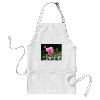 Roses nd Peace ASL Adult Apron