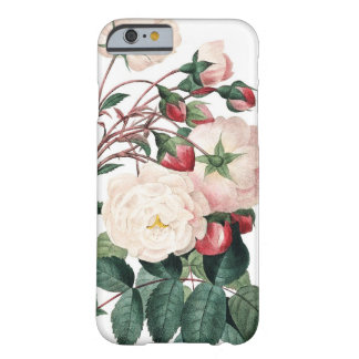 Roses of Redoute Les Roses vintage image Barely There iPhone 6 Case