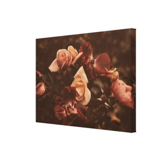 Roses of Yesteryear Canvas Print