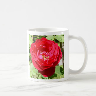 Roses on my Table Classic White Coffee Mug