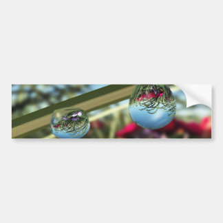 Roses on Raindrops Bumper Sticker