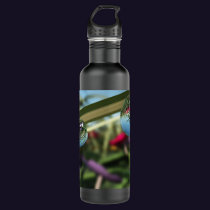 Roses on Raindrops Stainless Steel Water Bottle