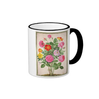 Roses, plate 4 from the Nassau Florilegium (w/c on Coffee Mugs