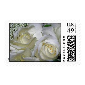 Roses_Postage blanco Franqueo
