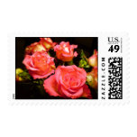 Roses Postage Stamps