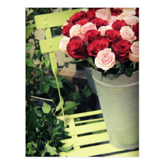 Roses Post Card