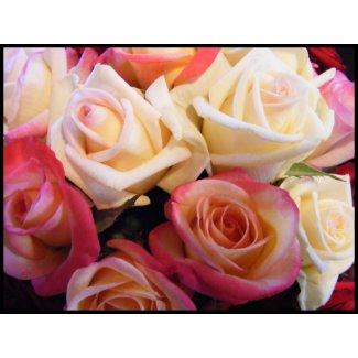 Roses roses roses stamp