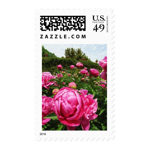 Roses roses roses stamps