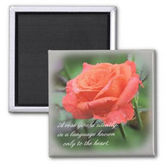 """Roses Speak Silently"" Single Coral Rose Magnet"