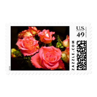 Roses Stamp