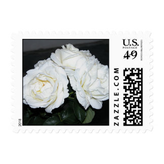 Roses-triple Stamp