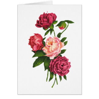Roses Valentine's Day Card (Large Print)