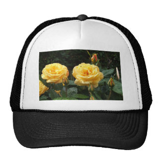 Roses With Raindrops Mesh Hat