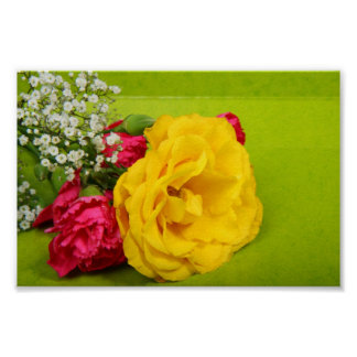 Roses yellow red flowers beautiful photo print