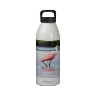 Rosette Spoonbill At Anastasia State Park Reusable Water Bottles