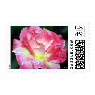 Rosey, S Cyr Stamps
