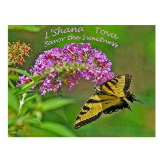 Rosh Hashanah Cards Gifts