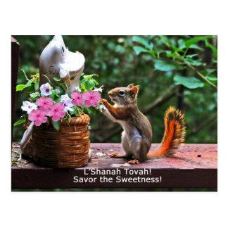 Rosh Hashanah Cards Gifts Post Card
