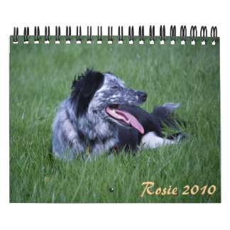 Rosie 2010 calendars