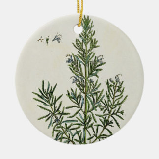 Rosmarinus Officinalis, from 'A Curious Herbal', 1 Ceramic Ornament