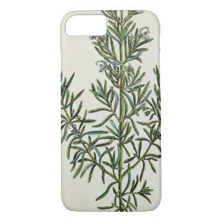 Rosmarinus Officinalis, from 'A Curious Herbal', 1 iPhone 7 Case