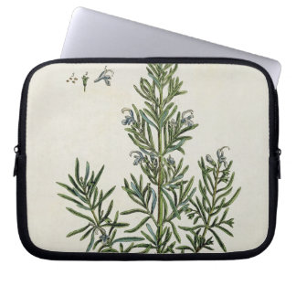 Rosmarinus Officinalis, from 'A Curious Herbal', 1 Laptop Sleeve