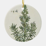 Rosmarinus Officinalis, from 'A Curious Herbal', 1 Christmas Tree Ornament