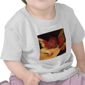 Rosso Fiorentino Musician Angel T-shirts