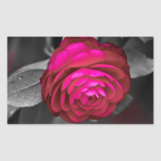 Rosy Camellia Rectangular Sticker