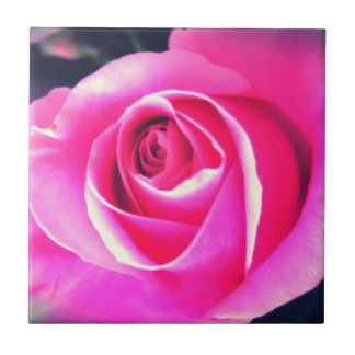 Rosy Floral Ensemble Ceramic Tiles