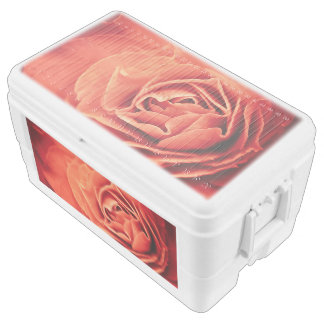 rosy living chest cooler