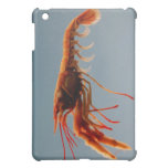 Rosy Lobsterette Case For The iPad Mini