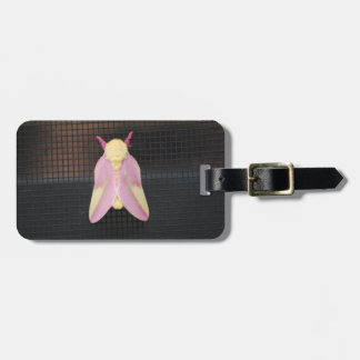 Rosy Maple Moth Travel Bag Tags