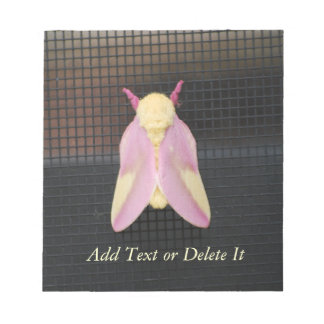 Rosy Maple Moth notepad