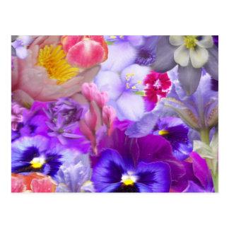 Rotary Garden Postcards