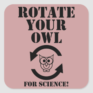 Rotate Your Owl Square Sticker