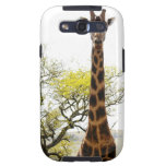 Rothschild Giraffe Endangered Species Android case Galaxy SIII Covers