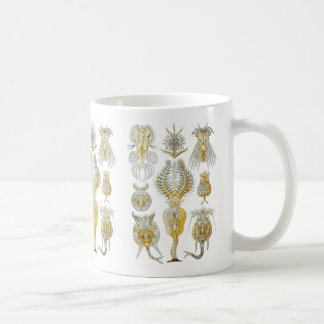 Rotifers Coffee Mug