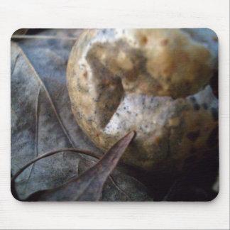 Rotten Walnut on Leaves Mousepad